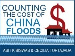 Counting the Costs of China's Floods
